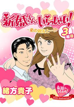 新婚さんいらっしゃい! 弟の親友と…!?-電子書籍