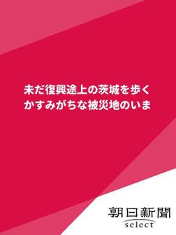未だ復興途上の茨城を歩く かすみがちな被災地のいま-電子書籍