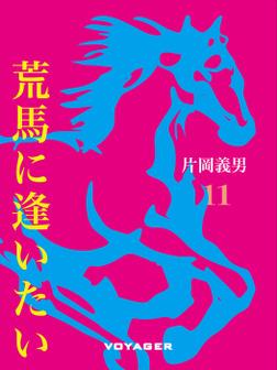 荒馬に逢いたい-電子書籍