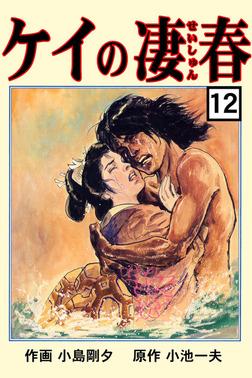 ケイの凄春12-電子書籍