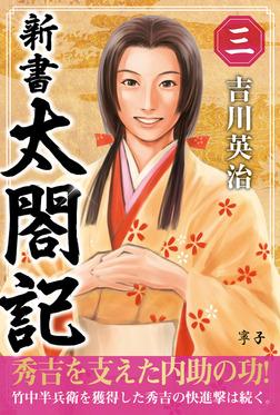 新書 太閤記 三-電子書籍