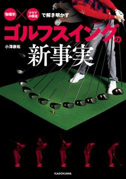「物理学」×「クラブの構造」で解き明かす ゴルフスイングの新事実-電子書籍