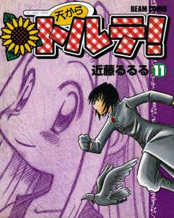 天からトルテ! (11)-電子書籍