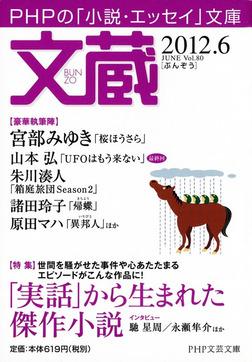 文蔵 2012.6-電子書籍