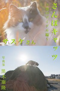 さんぽキャッツ サスケさん ~港のアイドル編~