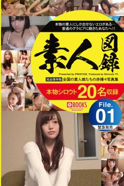 素人図録 File.01-電子書籍