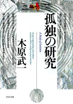 孤独の研究-電子書籍