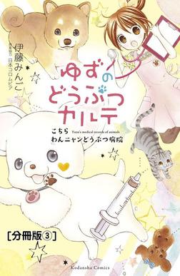 ゆずのどうぶつカルテ~こちら わんニャンどうぶつ病院~ 分冊版(3) 正反対な猫・チビとみつば-電子書籍