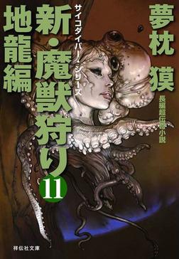 新・魔獣狩り11 地龍編-電子書籍