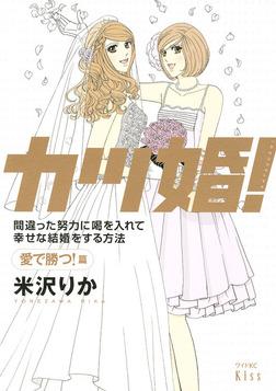カツ婚! 愛で勝つ!篇-電子書籍