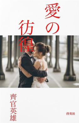 愛の彷徨-電子書籍