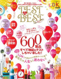 晋遊舎ムック TEST the BEST 2017-電子書籍