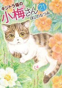 キジトラ猫の小梅さん (21)