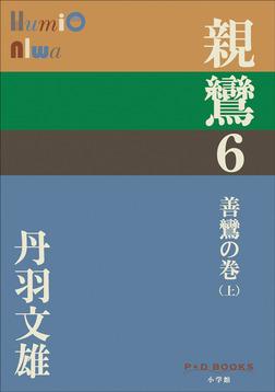 P+D BOOKS 親鸞 6 善鸞の巻(上)-電子書籍