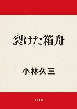 裂けた箱舟-電子書籍