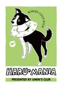 HARU MANIA 黄緑