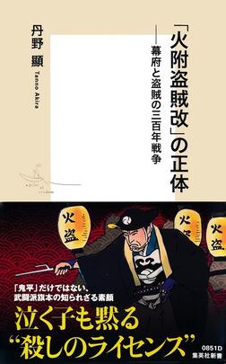 「火附盗賊改」の正体――幕府と盗賊の三百年戦争-電子書籍