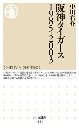 阪神タイガース 1985-2003-電子書籍