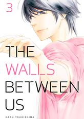 The Walls Between Us 3