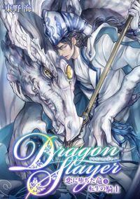 Dragon Slayer~恋に堕ちた竜と転生の騎士~