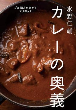 水野仁輔 カレーの奥義 プロ10人があかすテクニック-電子書籍