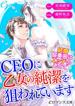 er-CEOに乙女の純潔を狙われています 結婚協奏曲はエッチのあとで-電子書籍