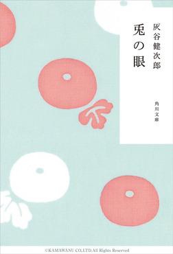 兎の眼-電子書籍