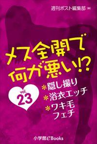 メス全開で何が悪い!? vol.23~隠し撮り、浴衣エッチ、ワキ毛フェチ~