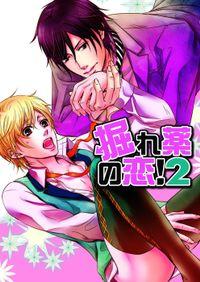 掘れ薬の恋!2(1)