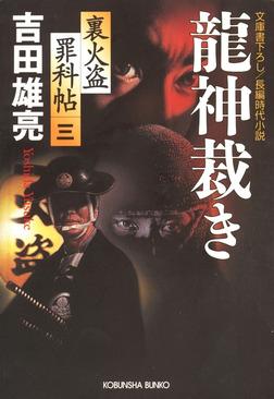 龍神裁き~裏火盗罪科帖(三)~-電子書籍