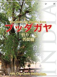 【audioGuide版】東インド012ブッダガヤ ~「悟り」と菩提樹
