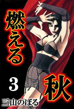 燃える秋 3-電子書籍