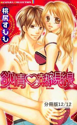 あぶない初恋 2 欲情熱視線【分冊版12/12】-電子書籍
