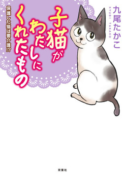 子猫がわたしにくれたもの 保護した猫は要介護!?-電子書籍