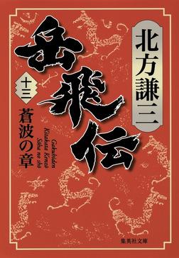 岳飛伝 十三 蒼波の章-電子書籍