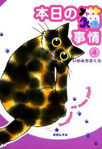 本日の猫事情 (4)