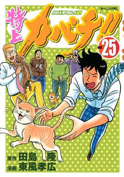 特上カバチ!! -カバチタレ!2-(25)-電子書籍