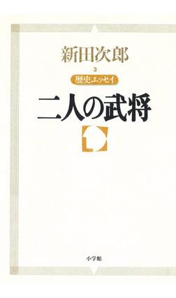 新田次郎エッセイ 歴史エッセイ 二人の武将-電子書籍