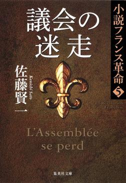 議会の迷走 小説フランス革命 5-電子書籍