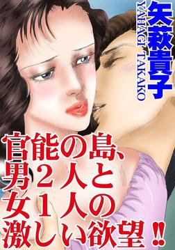官能の島、男2人と女1人の激しい欲望!!-電子書籍