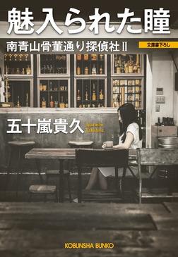 魅入られた瞳~南青山骨董通り探偵社II~-電子書籍