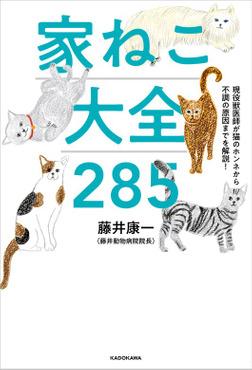 現役獣医師が猫のホンネから不調の原因までを解説! 家ねこ大全 285-電子書籍