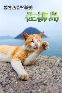 まちねこ写真集・佐柳島-電子書籍