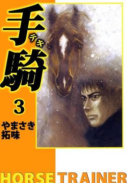 手騎―テキ―(3)-電子書籍