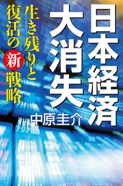 日本経済大消失 生き残りと復活の新戦略-電子書籍