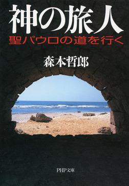 神の旅人 聖パウロの道を行く-電子書籍