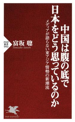 中国は腹の底で日本をどう思っているのか メディアが語らない東アジア情勢の新潮流-電子書籍