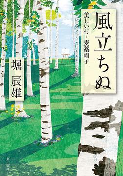 風立ちぬ・美しい村・麦藁帽子-電子書籍