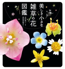 美しき小さな雑草の花図鑑-電子書籍