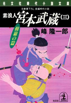 素浪人 宮本武蔵(三)〈修羅の篇〉-電子書籍